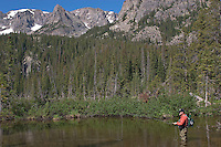 High Mountain Lake, Greenback Cutthroat, Rocky Mountain National Park, Colorado