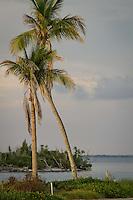 Captiva Island, Florida, USA. Photo by Debi Pittman Wilkey