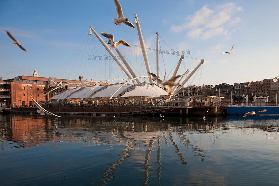 Genova, L'ascensore panoramico denominato Bigo,  trasformato da Renzo Piano nel simbolo architettonico del porto Antico di Genova.
