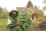Auroville worker. 2012