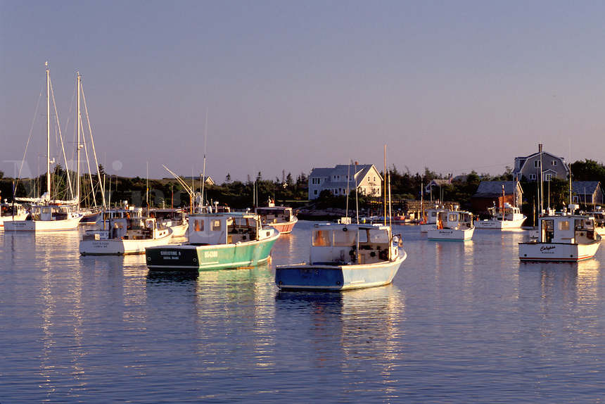 Maine, Corea, ME, Lobster boats in the scenic harbor of the fishing village of Corea.