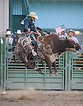 Dalton McMurtrie competes in the bull riding event at the Smackdown Tour at Fuji Park in Carson City, Nev., on Saturday, June 7, 2014.<br /> Photo by Cathleen Allison