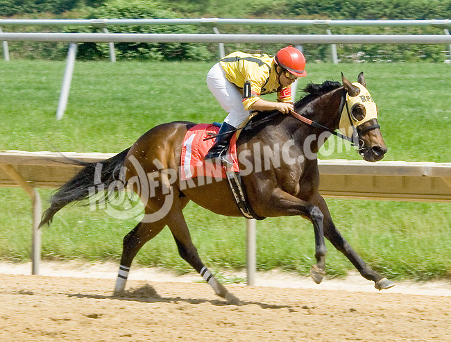 Skip To The North winning at Delaware Park on 5/24/12
