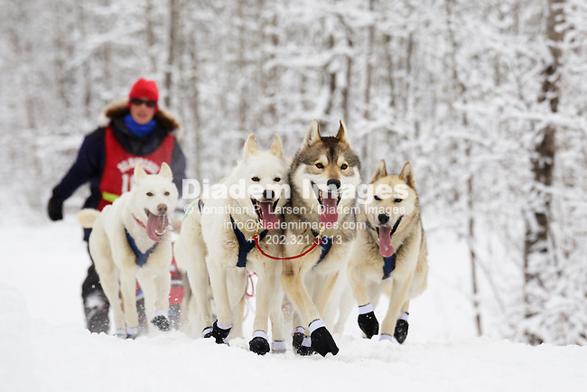 DULUTH, MINNESOTA - MARCH 10:  The sled dog team of mid-distance musher Natalie Harwood on the trail soon after the start of the John Beargrease sled dog competition in Duluth Minnesota on March 10, 2013.   Editorial use only.  Commercial use prohibited.  No animal rights advocacy usage.  (Photograph by Jonathan Paul Larsen)