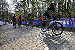 Daniel Oss (ITA) Bora-Hansgrohe on the the first ascent of the Kemmelberg during the 2019 Gent-Wevelgem in Flanders Fields running 252km from Deinze to Wevelgem, Belgium. 31st March 2019.<br /> Picture: Eoin Clarke | Cyclefile<br /> <br /> All photos usage must carry mandatory copyright credit (© Cyclefile | Eoin Clarke)