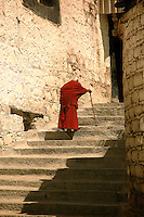 A monk climbs the stone steps at Drepung Monastery in Lhasa, Tibet. Drepung was the home to the Dalai Lamas and the seat of government in Tibet before the fifth Dalai Lama moved his government to the Potala Palace in 17th century.