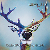 Simon, REALISTIC ANIMALS, REALISTISCHE TIERE, ANIMALES REALISTICOS, paintings+++++Card_AdamB_StagSelfie,GBWR112,#a#, EVERYDAY,deer