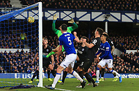 11th January 2020; Goodison Park, Liverpool, Merseyside, England; English Premier League Football, Everton versus Brighton and Hove Albion; Dominic Calvert-Lewin of Everton puts the ball in the Brighton net but sees his effort disallowed for handball - Strictly Editorial Use Only. No use with unauthorized audio, video, data, fixture lists, club/league logos or 'live' services. Online in-match use limited to 120 images, no video emulation. No use in betting, games or single club/league/player publications