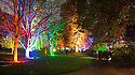 2014_11_22_Enchanted_Woodland_Syon_Park