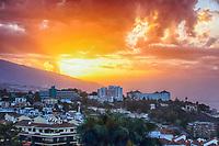 NOV 6 Tenerife - Puerto de la Cruz