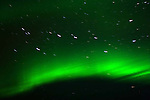 THE BIG DIPPER, URSA MAJOR,   AND THE NORTHERN LIGHTS,  'Aurora borealis' CHURCHILL, MANITOBA, CANADA