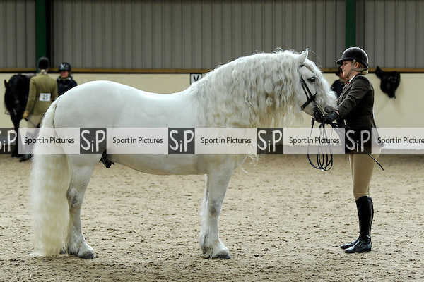 Class 19.  BSPS Area 15 Essex April Show. Brook Farm Training Centre. Essex. 18/04/2015. MANDATORY Credit Peter Reynolds/Sportinpictures - NO UNAUTHORISED USE - 07837 394578