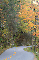 Little River Road, Great Smoky Mountains National Park