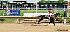 Donita's Ruler winning at Delaware Park on 7/24/14