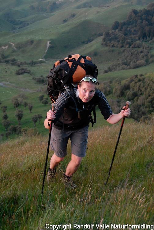 Jente går opp bratt bakke med vandrestaver og tung ryggsekk ---- Girl climbing hill with large pack and trekking poles