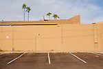 Palm trees rise above a strip mall in Sun City, Arizona December 2013.