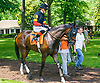 On the List with Sara Vermeersch aboard before The International Ladies Fegentri race at Delaware Park on 6/13/17