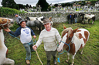 Puck Fair images by James Horan.<br /> A wild mountain goat is crowned King Puck for the weekend at one of Ireland's oldest fairs dating back to the 1600's. The first day of the Puck Fair is known as Gathering Day, The Puck goat is Enthroned on a stand in the town square and the great horse fair is held. The second day is known as Fair Day, This is the day of the cattle fair and general festivities. The last day is known as Scattering Day when the brief reign of Ireland's only king is ended and the Puck goat is returned to his mountain home.<br /> Pictures by James Horan.