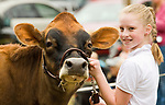 RIVERTON , CT-101517JS01-- Rebecca Wheeler, 10, of Down Home Farm in Roxbury, withl Daffodil, her 2-year-old Jersey cow, as she shows the junior dairy judging Sunday on the final day of the 108th Riverton Fair. <br /> Jim Shannon Republican-American
