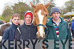 Johnaton O'Connor, John Jnr and John Courtney Snr all Faha selling horses at the horse fair in Milltown on Sunday   Copyright Kerry's Eye 2008
