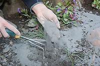Gesteinsmehl, Urgesteinsmehl, Steinmehl aus vulkanischem Basaltgestein wird im Garten ausgebracht, Gartenarbeit, Bodenverbesserung, biologischer Gartenbau, Biogarten, Bio-Garten