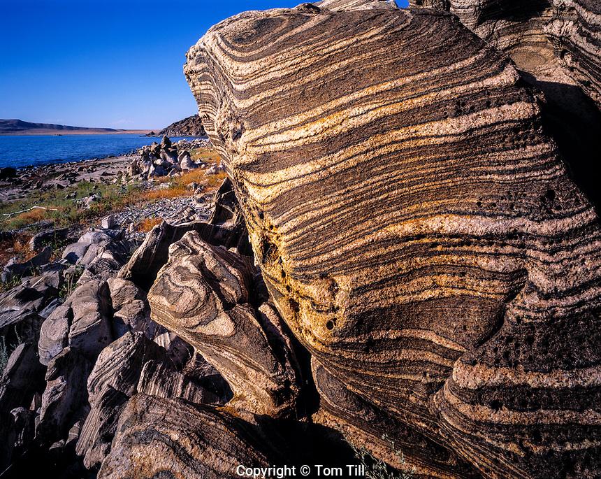 Rock Patterns at Antelope Island, Antelope Island State Park, Utah   Great Salt Lake