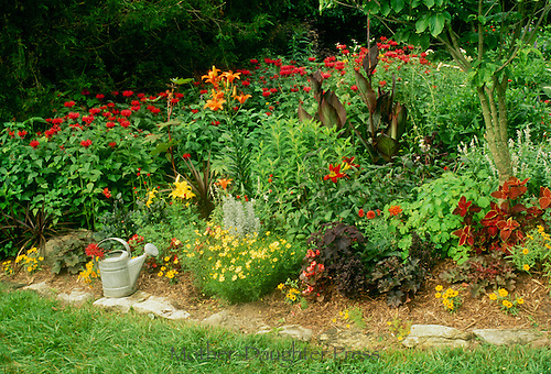 Lush red and yellow garden blooming with multiple varieties of matching and complimentary plants with metal watering can