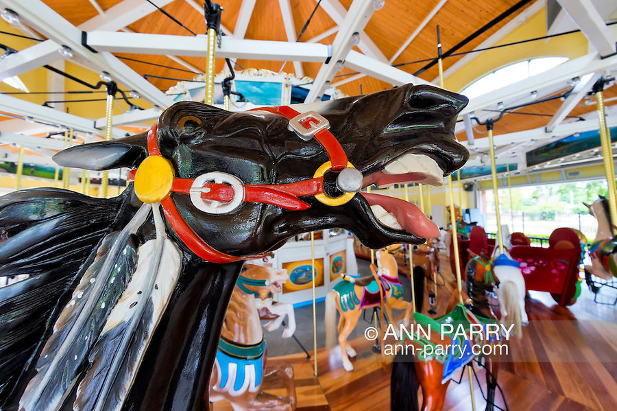 Nunley's Carousel at Museum Row, Garden City, Long Island, New York, USA, 2012, taken with 180-degree fisheye lens