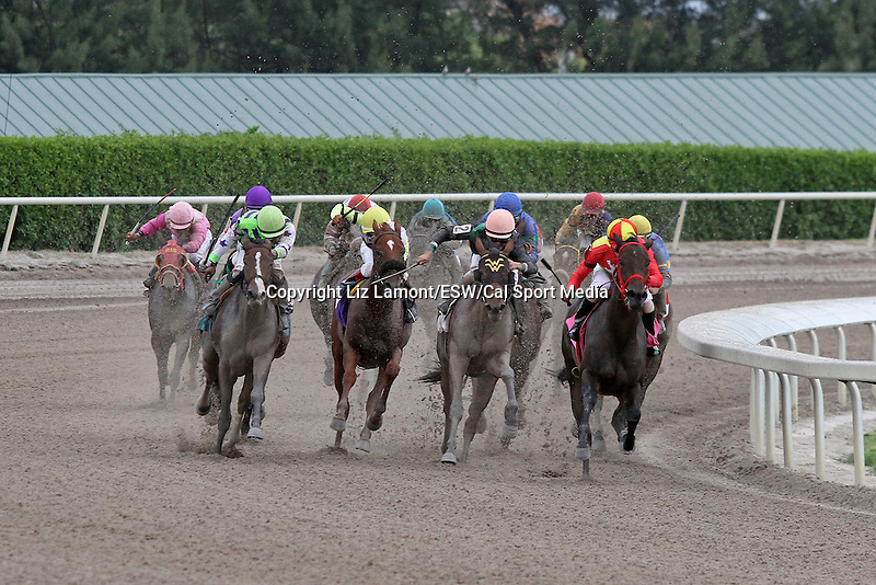 September 06, 2014:  Scenes from Gulfstream Park.  #8 Lei it On Me with jockey Victor Carrero on board, breaks her maiden in race 8, at Gulfstream Park in Hallandale Beach FL. Liz Lamont/ESW/CSM