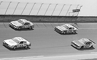 Richard Petty and Cale Yarborough battle fotr the lead as they pass Clark Dwyer(17) and Trevor Boys(48) Firecracker 400 at Daytona International Speedway in Daytona beach, FL on July 4m 1984.  (Photo by Brian Cleary/www.bcpix.com)