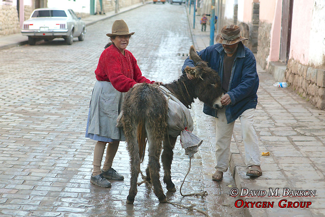 Couple With Donkey