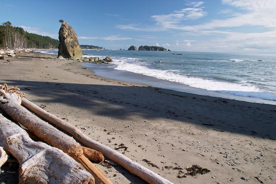 Driftwood on Mora Beach, Olympic National Park, Olympic Peninsula, Clallam County, Washington, USA