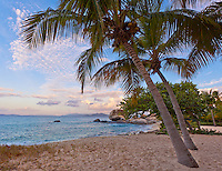 Virgin Gorda, British Virgin Islands, Caribbean <br /> Palm trees shelter a quiet beach on Spring Bay at sunset, Spring Bay National Park