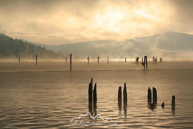 Misty November Morning on Lake Coeur D Alene