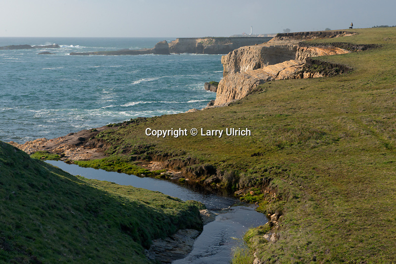 Sea Lions Rocks and Point Arena Lighthouse, Island Trail<br />
