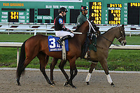 January 17, 2015:Four Leaf Chief (LA) with Florent Geroux in the Lecomte Stakes at the New Orleans Fairgrounds course. Steve Dalmado/ESW/CSM