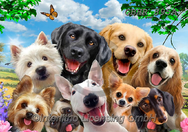 ,dogs, ,puzzle,puzzles