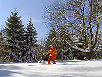 Deutschland, Frau beim Nordic Walking im Winter | Germany, woman doing nordic walking in winter