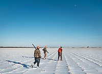 From left, Web Editor for Ducks Unlimited Chris Jennings (cq), OutdoorLife Editor Andrew McKean and NO NAME search for pheasant on a hunting trip near Grand Island, Nebraska, Sunday, December 4, 2011. ..Photo by Matt Nager