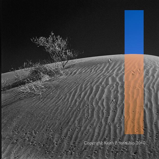 Simpson DesertSimpson DesertSimpson DesertSimpson Desert