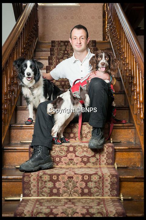 BNPS.co.uk (01202 558833)<br /> Pic: LauraDale/BNPS<br /> <br /> Mark Doggett with his dogs Meg (L) and Jess (R).  At Bantock House Museum.<br /> <br /> New tricks for old dog breeds...<br /> <br /> Enterprising Mark Doggett has come up with a new business idea that's not to be sniffed at...A team of crack pooches that use thier noses to find dry rot in old houses.<br /> <br /> And he now has plans to train the cunning canines to hunt out bed bugs for hotel chains as well.<br /> <br /> Sniffer dogs have been trained to detect the destructive fungi early and in areas humans can't access, meaning they could save people thousands of pounds of expensive damage.<br /> <br /> There are even plans to train the dogs to detect bed bugs, which could prove a huge help to hotels, hospitals and boarding schools.<br /> <br /> Mark Doggett, 30, started his business Enviro-dogs last year and it is the only company in the country people can hire to check properties for dry rot.