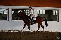 Elizabeth Allardyce, Remi