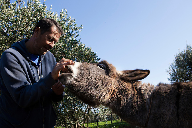 Ein Portrait von Toni Bacic  mit seinem Esel Bruno. Bruno ist eine traditioneller dalmatinischer Esel und der Einzige seiner Art in Neum. Bacic ist dabei, einen Campingplatz zu etablieren (Auto Kamp Mir), der auf Touristen abzielt, die an nachhaltigem &ouml;kologischen Tourismus mehr interessiert sind, als an Badeurlaub. /<br /> A Portrait of Toni Bacic and his donkey named Bruno. The Dalamtian donkey is the only one of it's kind in Neum. Bacic is about to build up a camping park (Auto Kamp Mir) that aims to attract tourist that are more interested in nature and ecological tourism than in swimming in the sea.<br /> / Der kleine Ort Neum liegt in Bosnien-Herzegovina und bildet den einzigen Zugang zum Meer des Balkanlandes. Auf einer L&auml;nge von 9 km durchschneidet der Ort das kroatische Staatsgebiet (Neum-Korridor) Seit dem EU-Beitritt Kroatiens ist Neum auf beiden Seiten von EU-Au&szlig;engrenzen eingeschlossen. / The small city of Neum in Bosnia and Herzegovina is the only place in Bosnia, where the country has access to the adriatic sea. Over a length of 9 kilometers the area cuts Croatian territory in two pieces. Since Croatia became part of the European Union, the city of Neum is enclosed between two EU-boarders.