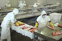 Pesca Exportação