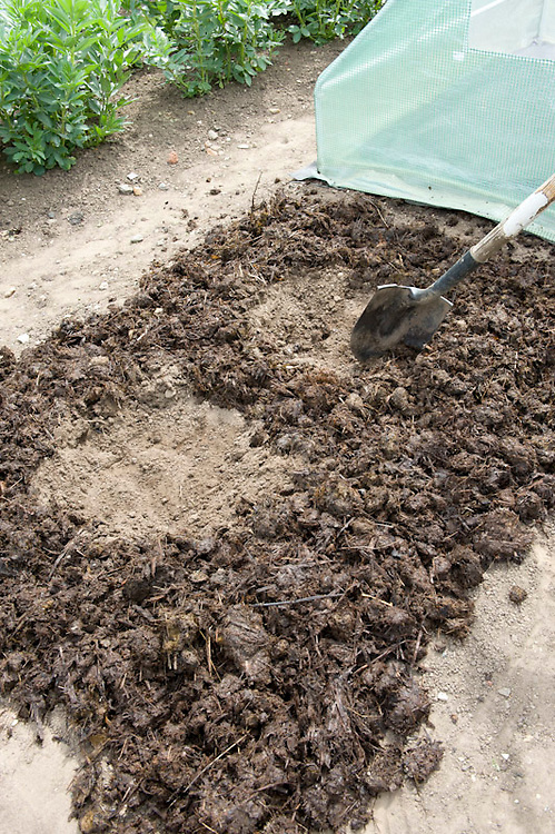 Planting melons 1 of 5. Prepare the ground with a mulch of well-rotted compost or manure. Clear a number of circular planting holes in the soil.
