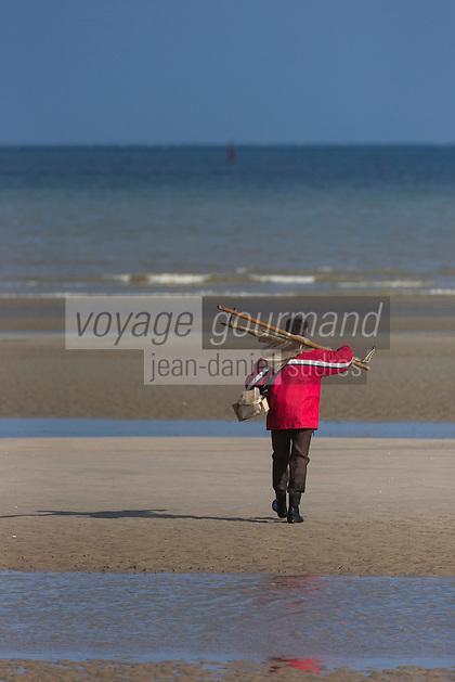 France, Nord (59),Côte d'Opale, Zuydcoote:  Pêcheur de  crevettes sur la plage  //  France, Nord, Opal Coast, Zuydcoote: Shrimper on the beach