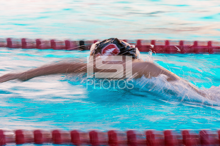 Stanford, Ca - October 20, 2016: The Stanford Women's Swimming Team vs the Washington State Cougars at Avery Aquatic Center. Final score Stanford Cardinal 149, Washington State Cougars 99.