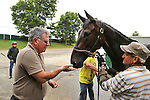 New York Post Columnist John Crudele feeds mints to Mo's In The House, a thoroughbred in the barn of Trainer Chuck Spina at Monmouth Park in Oceanport, New Jersey on Saturday July 9, 2016. Photo By Bill Denver/EQUI-PHOTO