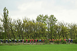 The peloton in action during Stage 2 of the 2019 Tour de Yorkshire, running 132km from Barnsley to Bedale, Yorkshire, England. 3rd May 2019.<br /> Picture: ASO/SWPix   Cyclefile<br /> <br /> All photos usage must carry mandatory copyright credit (&copy; Cyclefile   ASO/SWPix)