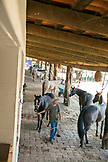 MEXICO, San Pancho, San Francisco, La Patrona Polo Club, staff members prepping the horses for the match